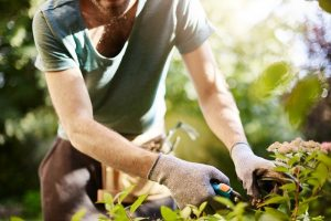 emploi agriculture urbaine